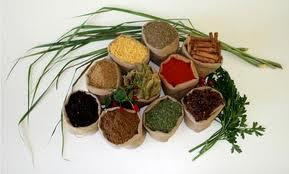 Ayur_Herbs