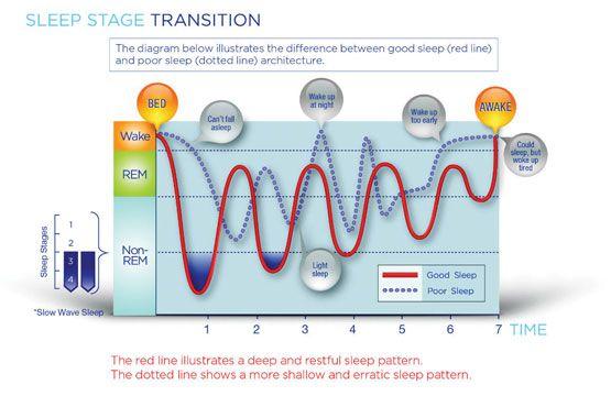 Sleep-Cycle-Graph