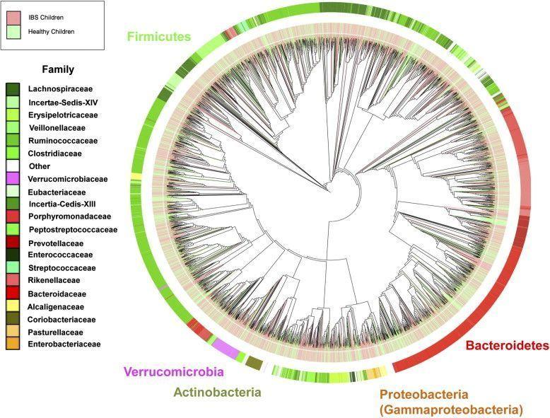 Microbiomibsnormal