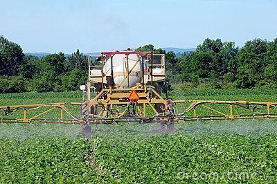 top-window-4-environmental-toxins