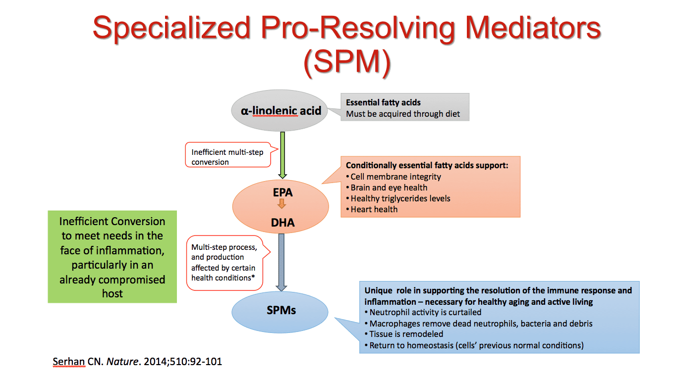 SPM Fig 3