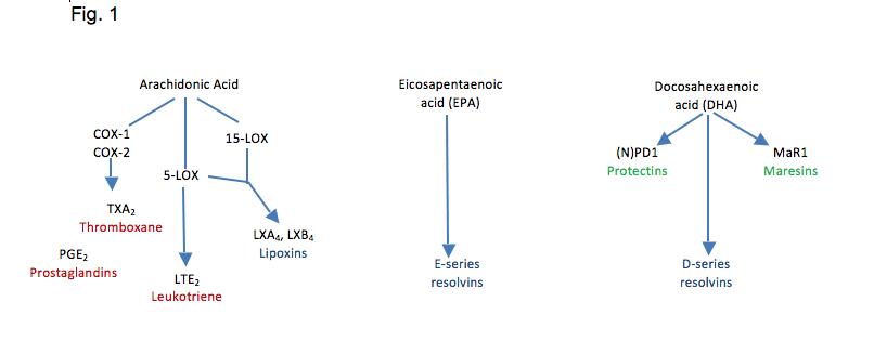 SPM fig 1