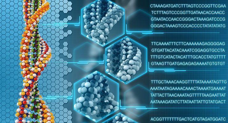 genomic sequencing usamriid