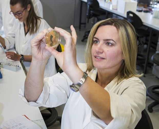 eight col Dr Brigitta Kurenbach supplied