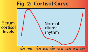 Cortisol curve