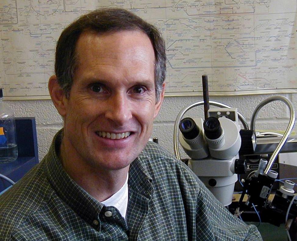 Bruce Stevens PhD