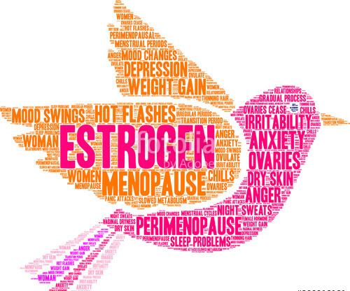 Estrogen Hummingbird