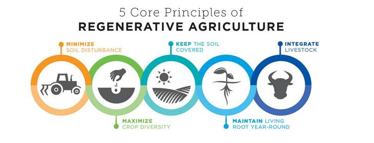 Regenerative Ag Principles