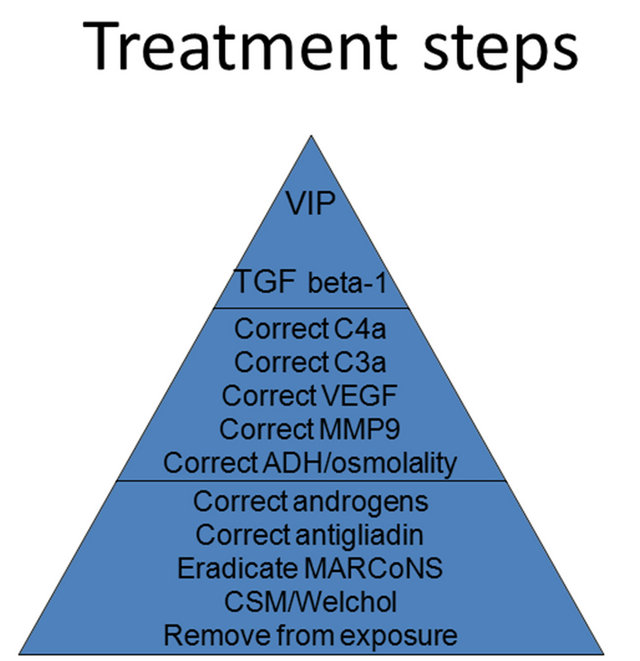 Shoemaker CIRS treatment protocol