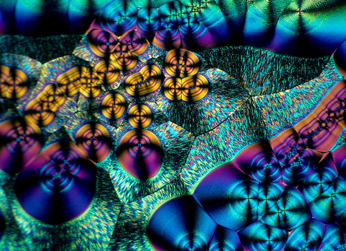 Ascorbate crystals Brian Johnston Nikon Small World competition